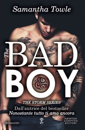 the-bad-boy-the-storm-series