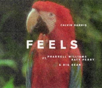 """FEELS"" - CALVIN HARRIS"